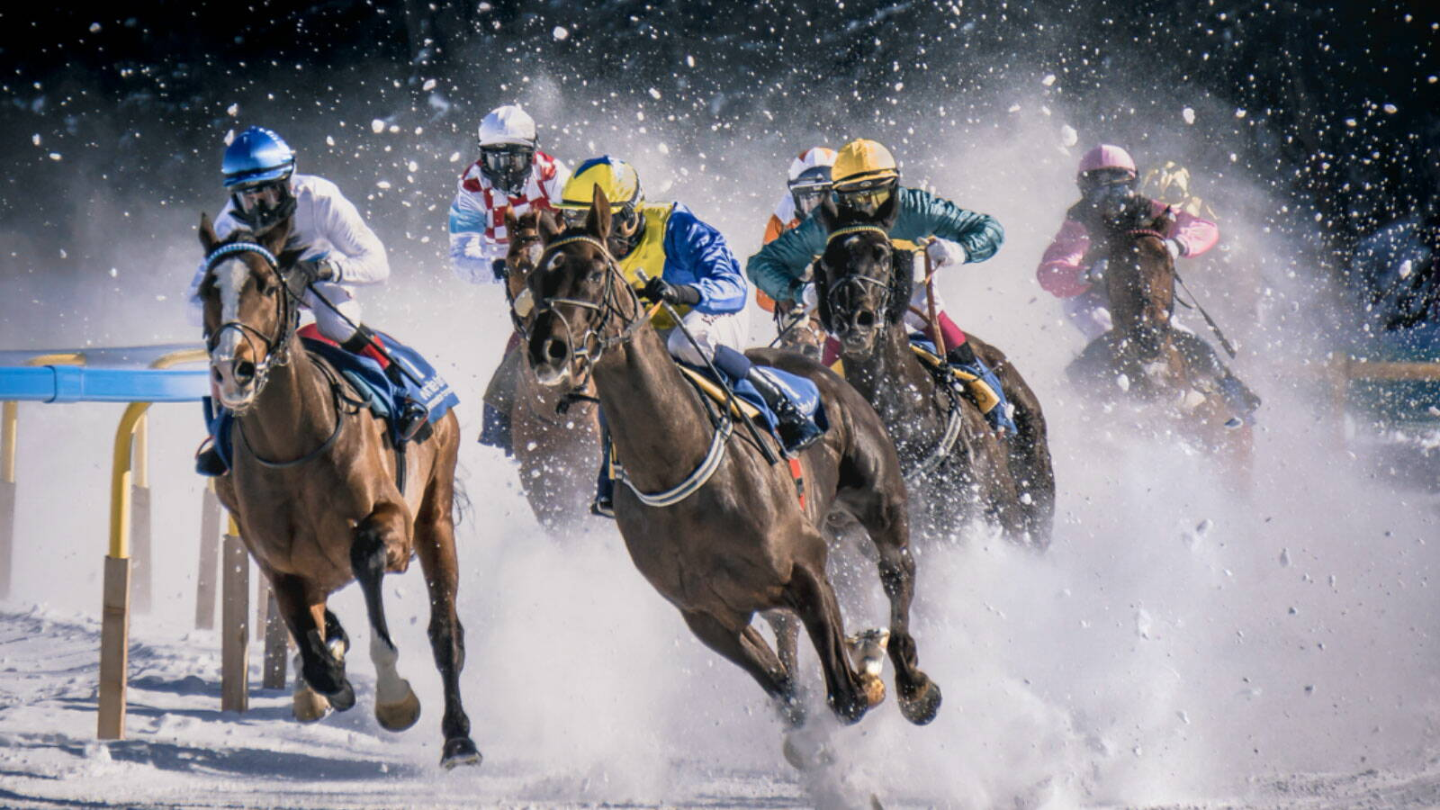 Online sports betting casino poker horse racing at today predictions betting closed